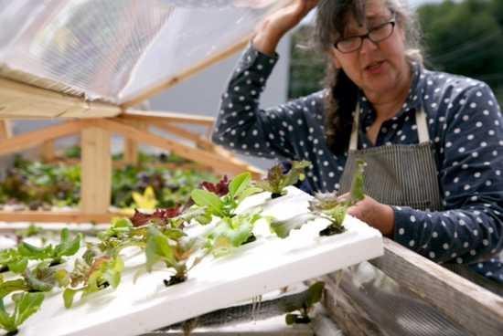 AN URBAN FARM MAKES HISTORY, MOVES TOWARD A BETTERTOMORROW